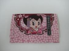 Kyoto Tezuka Osamu World Original Goods (photo 4)